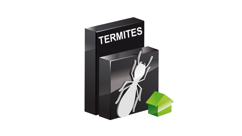 Re-certification Termites